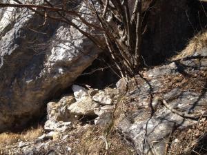 Cogol sotto la Giozona 1107 m